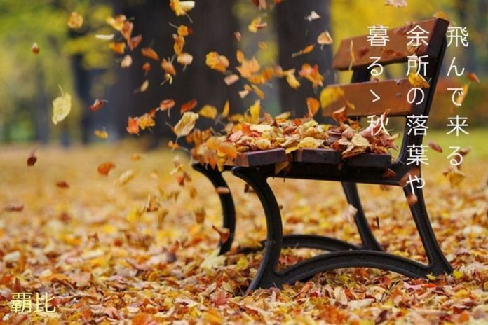 haiku de otoño. Hojas muertas.