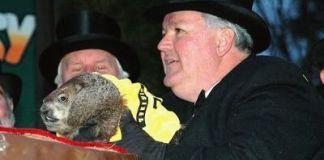 Marmota Phil en 2006