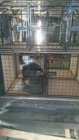 dog cage 24