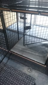 dog cage 21