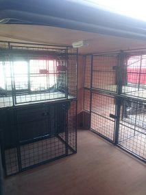 dog cage 9