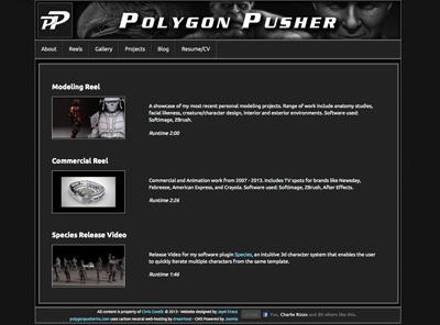 polygonpusherinc.com – website designed by Jayel Draco