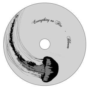 Everything on Fire: Disc