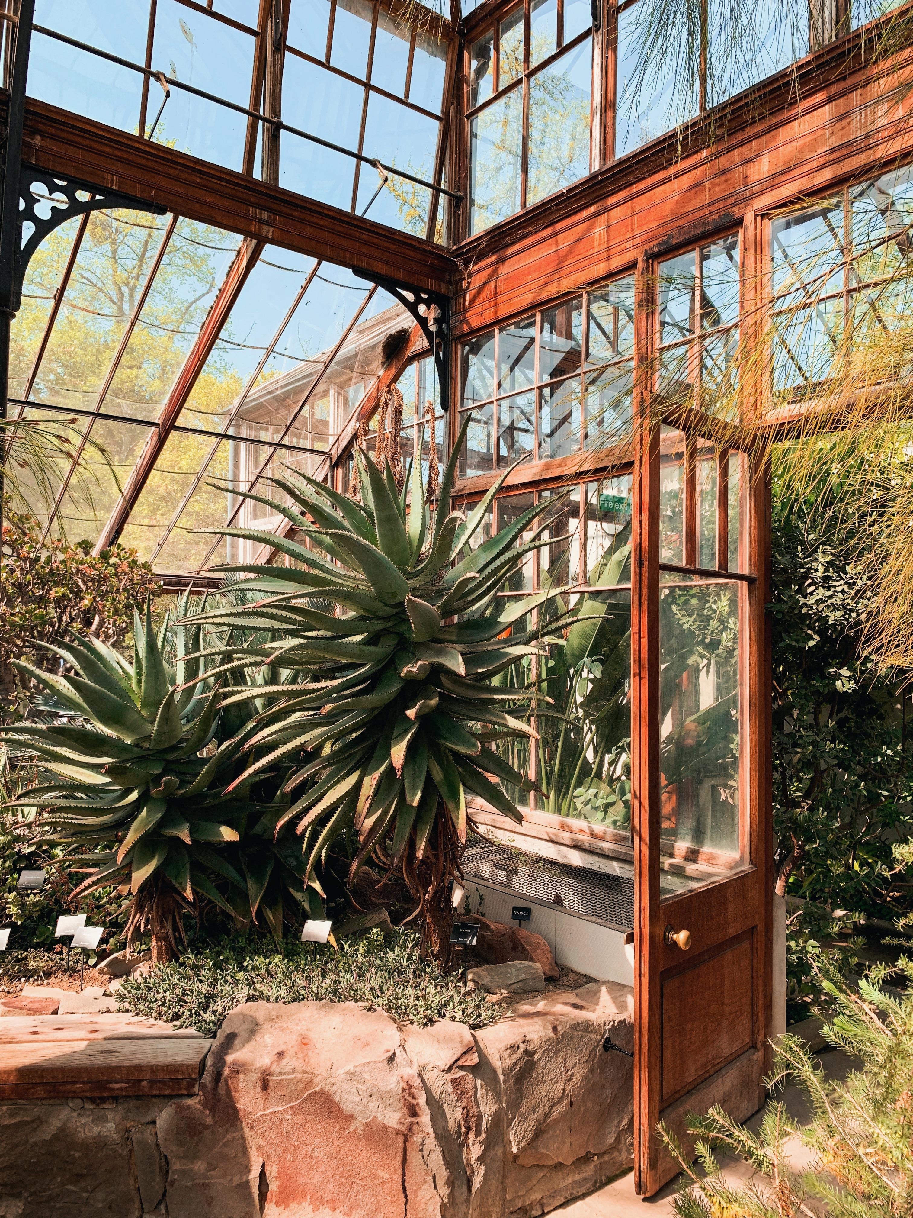 places to explore jaye rockett cambridge botanic garden