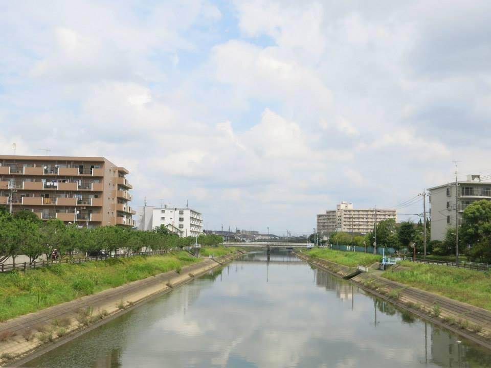 chiba=chiba2-hazel-caasi-japan