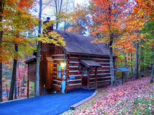 Honey Love is a private and secluded one bedroom cabin perfect for anniversaries, private getaways, and honeymoons. It is located conveniently to Pigeon Forge on Bluff Mountain