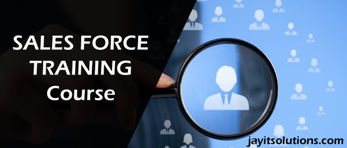 Salesforce Training course