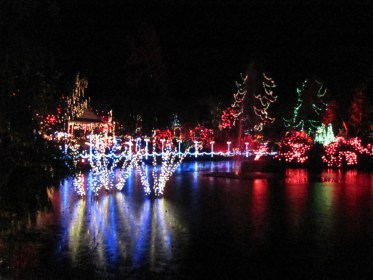 Festival of Lights at Van Dusen Garden