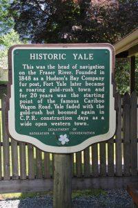 Yale_IMG_6015