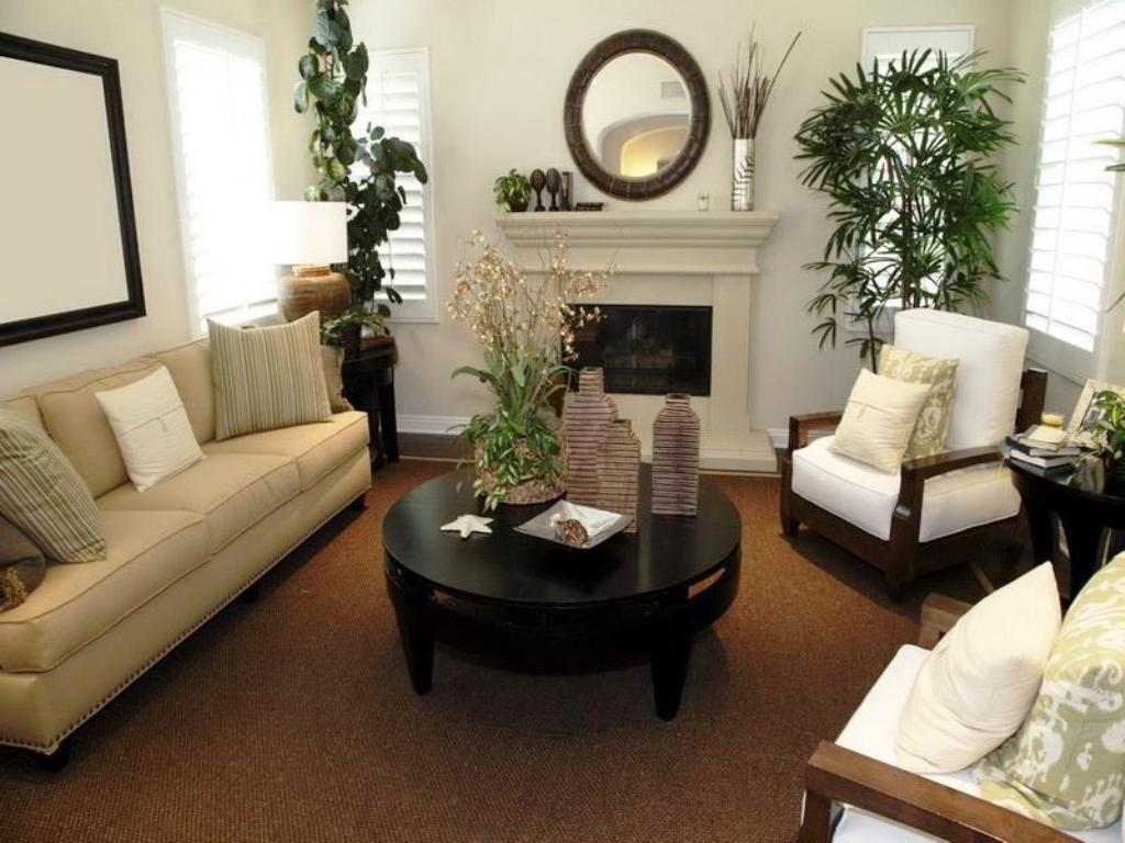 living room decorating ideas apartment inspiring pinterestjayne atkinson homes image of pictures