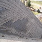 Shingle blow offs