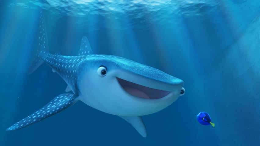 finding dory photo 1