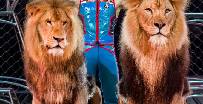 Ringling Bros. and Barnum and Baily Show – Coming To Washington D.C. and Virginia