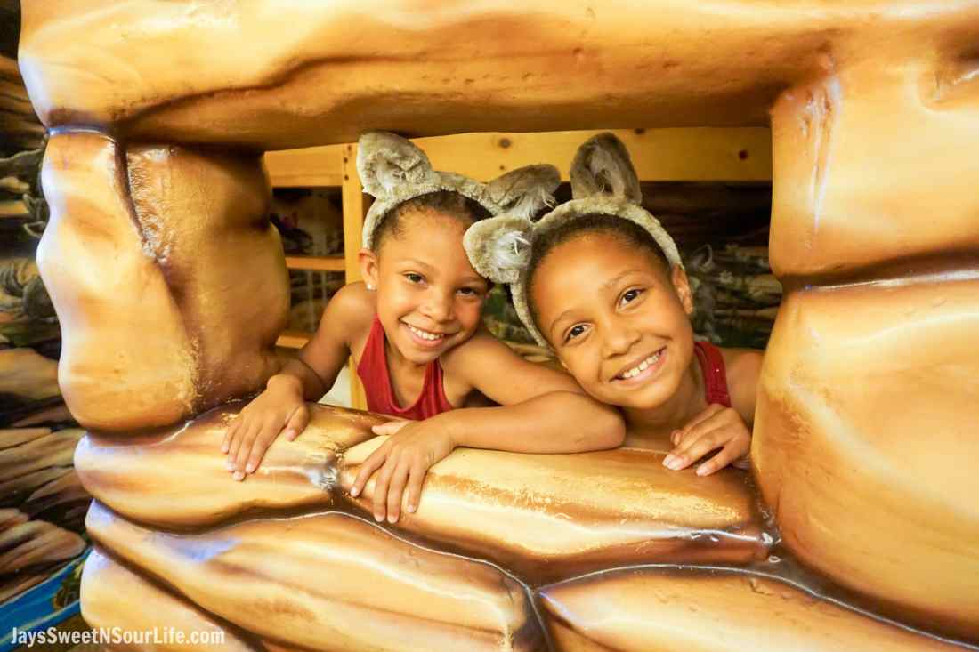 The Great Wolf Lodge - Cabarrus County Girls In Wolfs Den. A Large Families Adventure Guide To Cabarrus County - North Carolina - via JaysSweetNSourLife.com.