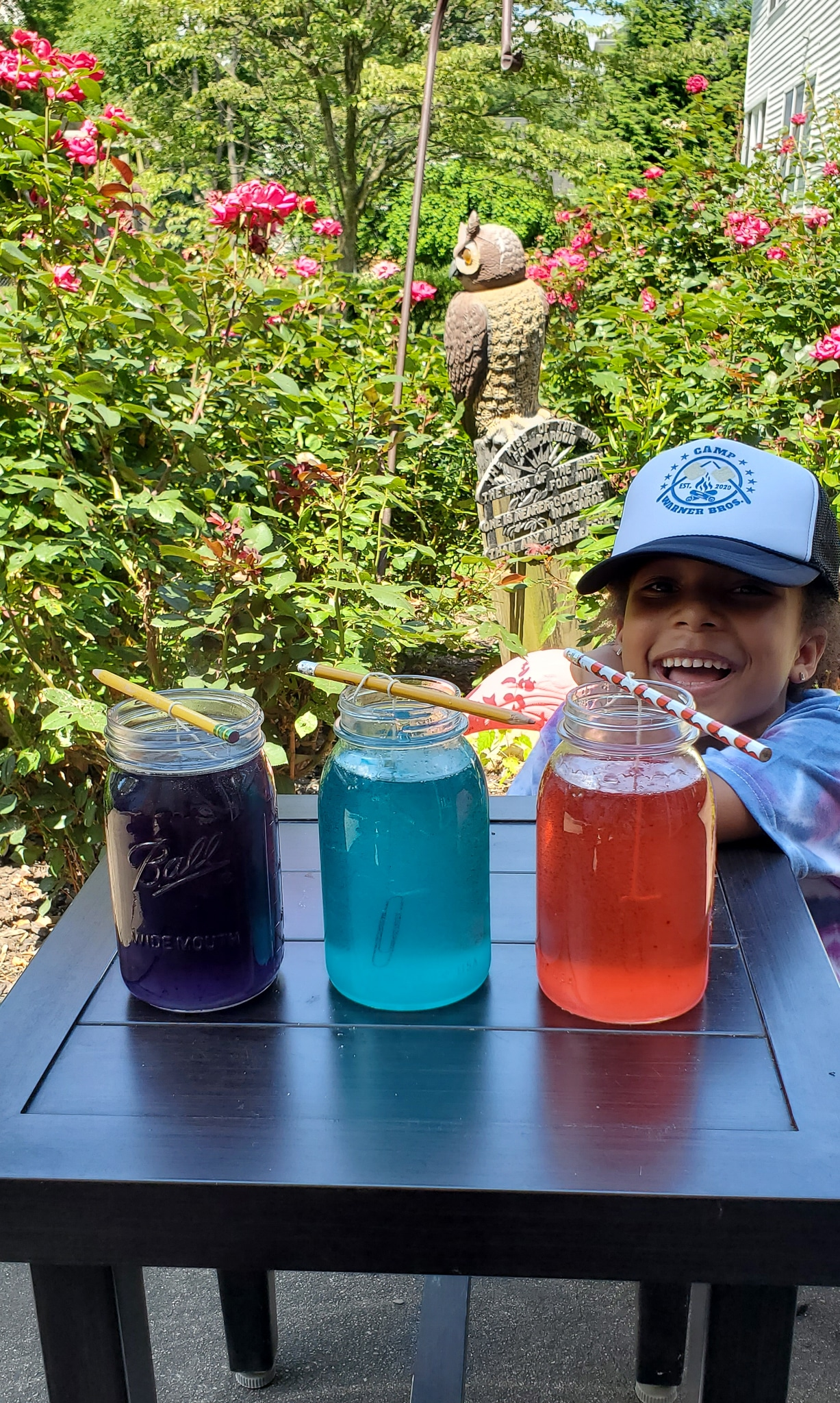 Crystal Gem Candy Jars Esuun. Grow your very own Crystal Gem Candy at home! Inspired by Stephen Universe Crystal Gem's a sugary treat that doubles as a science experiment, you can create and watch your very own candy gems grow day by day.