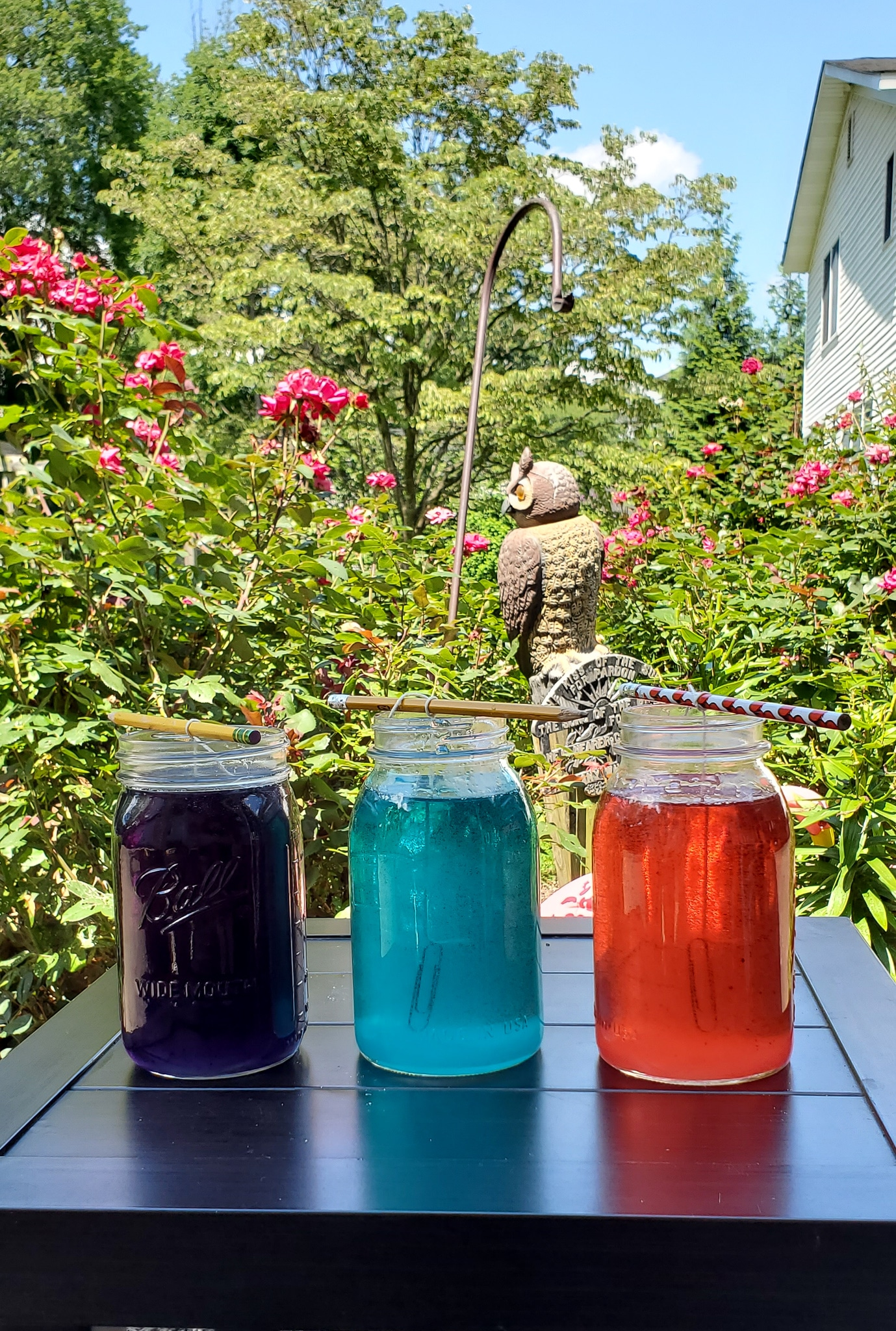 Crystal Gem Candy Jars. Grow your very own Crystal Gem Candy at home! Inspired by Stephen Universe Crystal Gem's a sugary treat that doubles as a science experiment, you can create and watch your very own candy gems grow day by day.