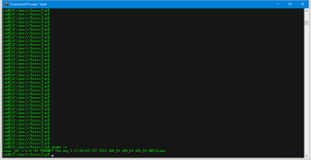 Command_Prompt_-_bash_1