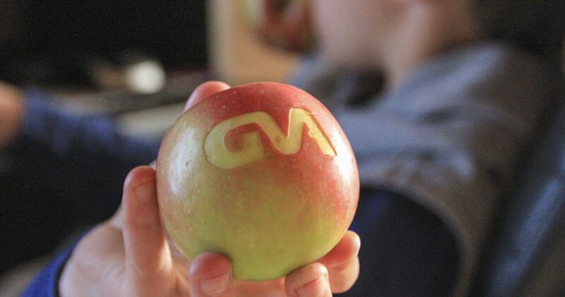 opstartkost fruit graveren