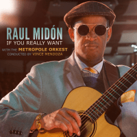 If you Really Want - Raul Midon