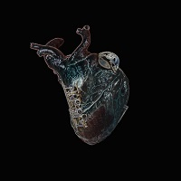 Guardians of the heart machine - Seamus Blake