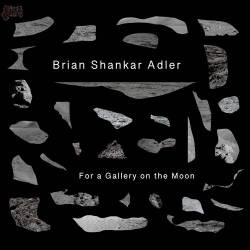 For a Gallery On The Moon - Brian Shankar Adler