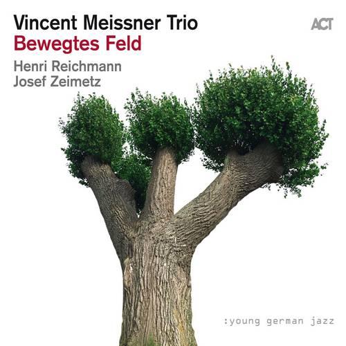 Bewegtes Feld - Vincent Meissner
