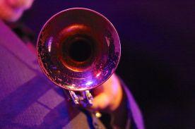0K3A4207, Trompete (dombr)