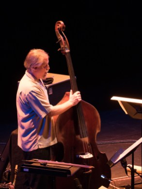John Lindberg double bass. Foto: Hufner