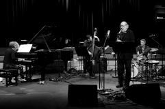 Anat Fort Trio - Foto TJ Krebs