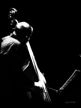 Jazzfest Berlin 2017. Bassist Chris Tordini.Foto: Petra Basche