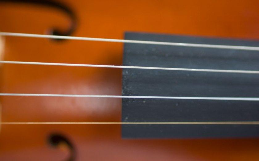 Detail einer Violine aus Holz. Foto: Hufner