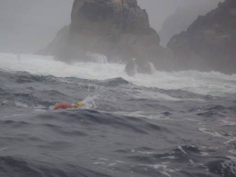 Swimming around the The Cape of Storms