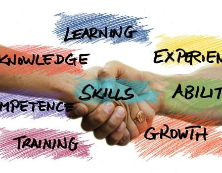 Skills & Competencies