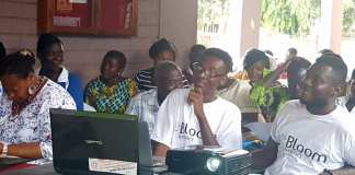 Bloom Impact, the financial services marketplace for small businesses in Ghana