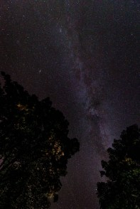 starry sky with the milky way