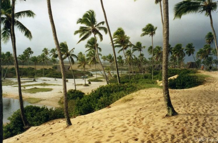 Brasil - Bahia - Praia de Arembepe - APA do Rio Capivari