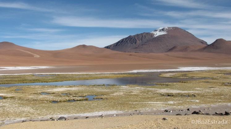 Chile - Atacama - Reserva Nacional Los Flamencos