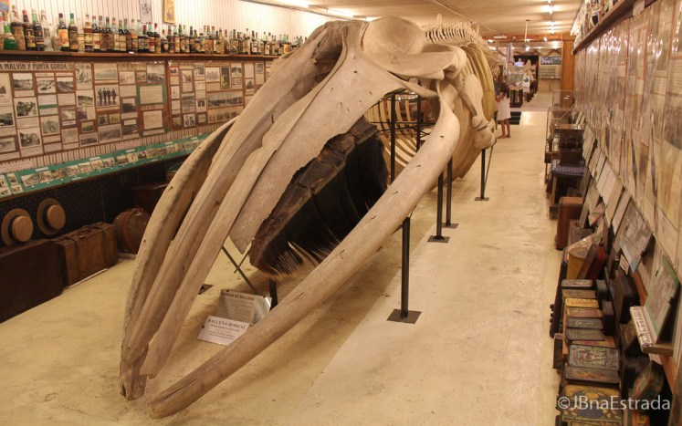 Uruguai - La Barra - Museo del Mar