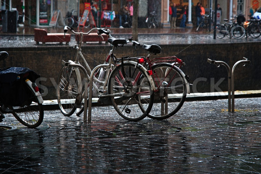 Rainy day in the city