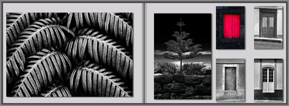 photo book black white red