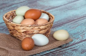 putting-all-your-marketing-eggs-in-one-basket-J Carcamo & Assoc