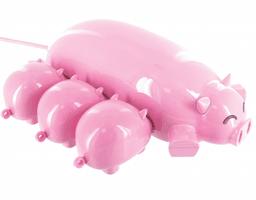 cochon usb hub