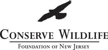 cwf_thick_logo