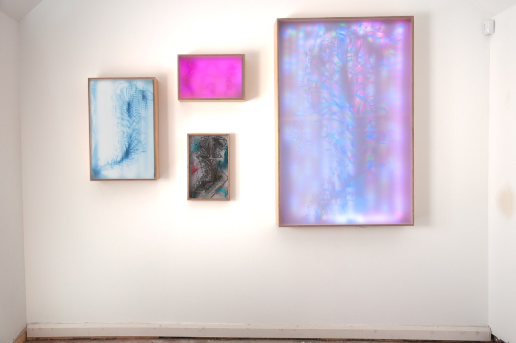 Four colourful lightboxes mounted on an art gallery wall