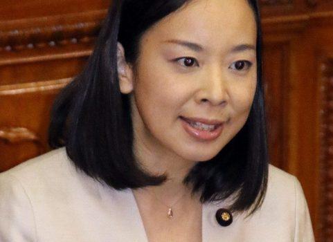 第2次補正予算が成立  参院本会議 吉良氏が反対討論