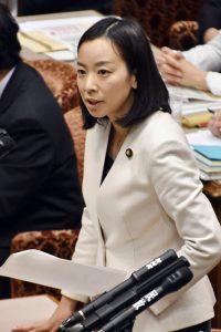 質問する吉良よし子議員=1日、参院TPP特委
