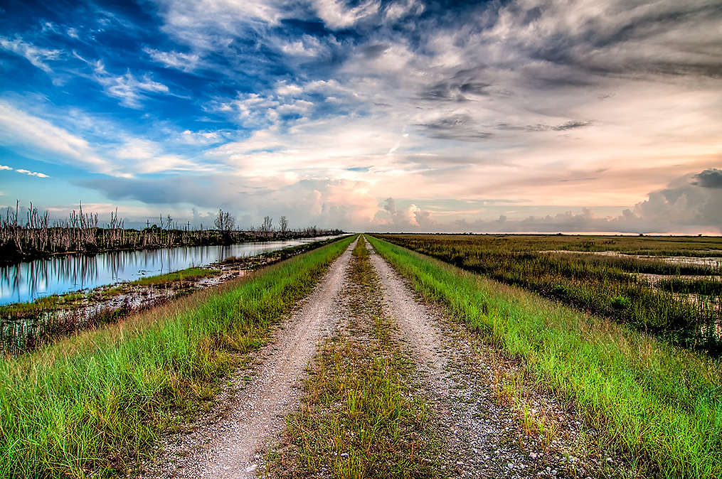 Everglades dirt road
