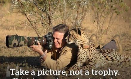 Prenez une photo, pas un trophée. C'est comme cela que les vrais hommes «shootent» les animaux. (Ricky Gervais)