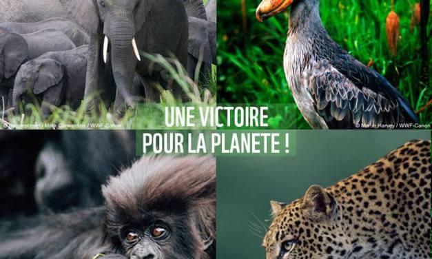 Une victoire pour la planète: SOCO n'explorera pas dans le parc des Virunga