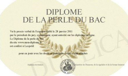 Le bac des Petits Frenchies – Les perles!